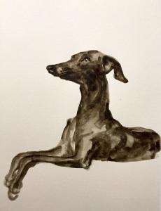 Greyhound by Miller